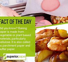 Fact of the Day by SuperiorPaper
