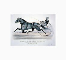 Bay Stallion Hambrino, by Edward Everett - 1879 - Currier & Ives T-Shirt