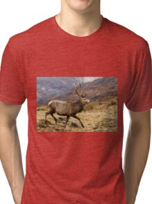 Red Deer Stag Running Tri-blend T-Shirt