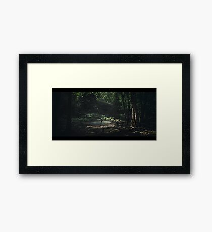Triangle... Framed Print