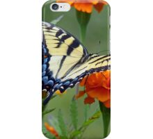 Yellow female Eastern Tiger Swallowtail iPhone Case/Skin