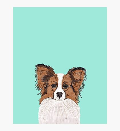 papillon cute fluffy dog breed funny illustration mint turquoise puppies Photographic Print