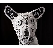 Day of the Dead Dog Photographic Print