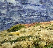 Spring Sea by RC deWinter
