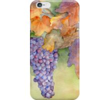 Fall Grape Harvest iPhone Case/Skin
