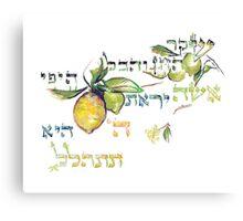 A Virtuous Woman - Eshet Chayil - Mishlei 31:30 Canvas Print