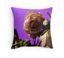 Dead Dried White and pink roses Throw Pillow