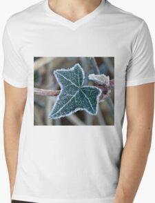Frost on Ivy Leaf Mens V-Neck T-Shirt