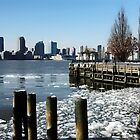 ICE ON THE HUDSON by Michael Carter