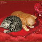 Valentine & Kittens by JaneEden
