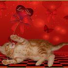 Valentine & Cheeky Kitten by JaneEden