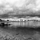 bw image at Leven River, Ulverstone by gaylene