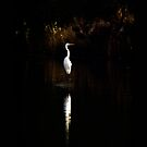 Egret by Bill  Russo