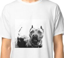 Pitbull Dog Classic T-Shirt