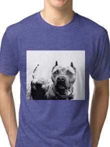 Pitbull Dog Tri-blend T-Shirt
