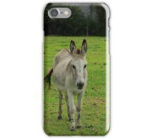 Donkey on a Farm iPhone Case/Skin