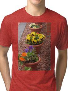 Colourful Pansies Tri-blend T-Shirt