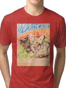 Two Kittens Tri-blend T-Shirt