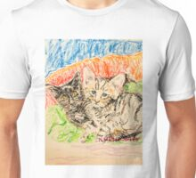 Two Kittens Unisex T-Shirt