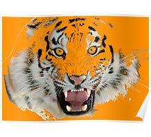 Tigr2 Poster
