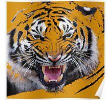 Tigr3 Poster
