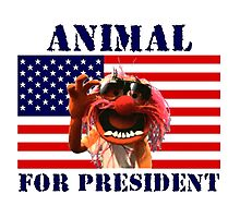 Animal for President Photographic Print