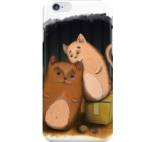 Two cute cats on wooden floor iPhone Case/Skin