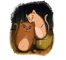 Two cute cats on wooden floor Photographic Print