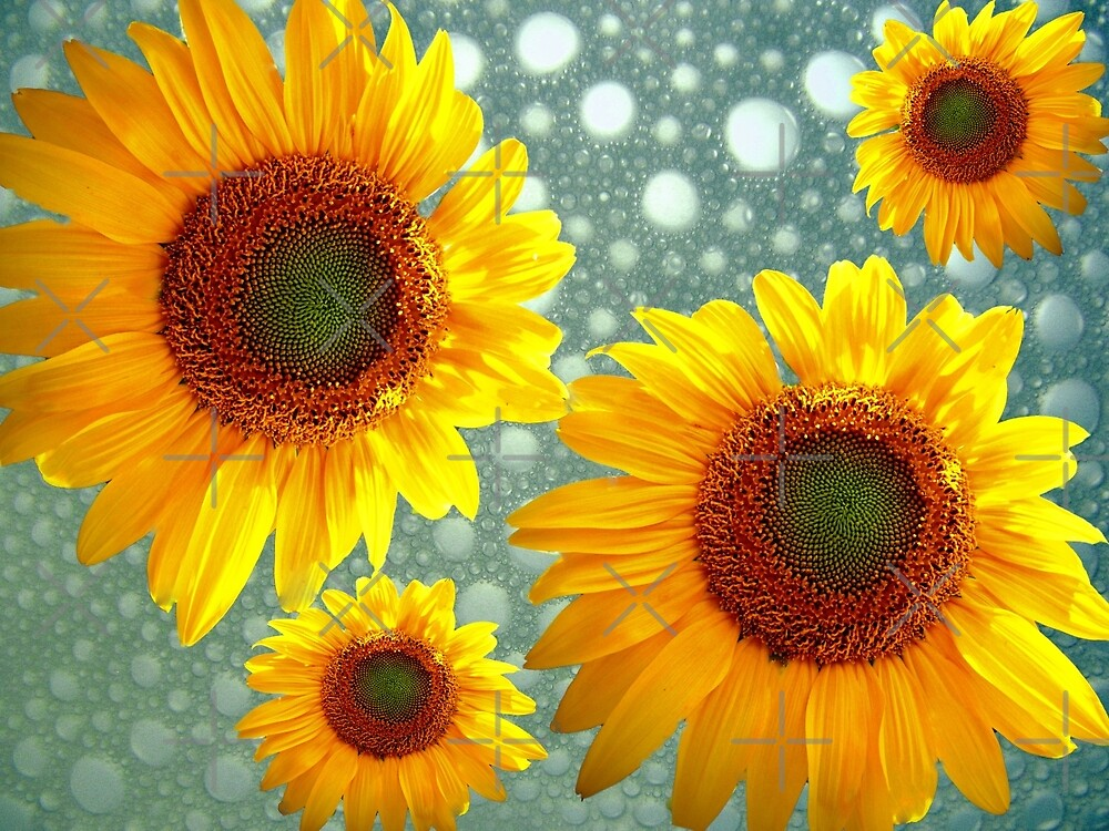 Happy Bubbly Sunflowers by Susan S. Kline