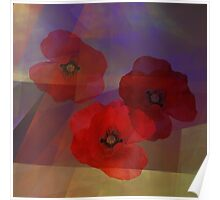 Summer promise with red poppies Poster