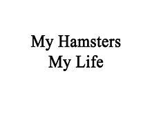 My Hamsters My Life  by supernova23