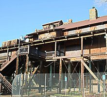 Rusty Duck Restaurant and Saloon, Closed by Martha Sherman