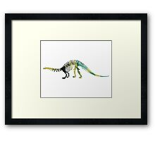 dinosaur skeleton Framed Print