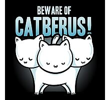 Catberus Photographic Print