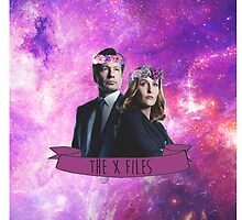 the x files by meesters