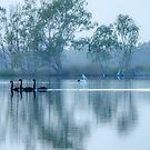 On The Murray II by Jessy Willemse