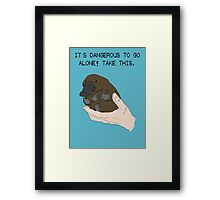 It's dangerous to go alone! Take this baby platypus! Framed Print