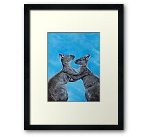 Kangaroo Island Kangaroos Framed Print