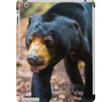 Yogi iPad Case/Skin