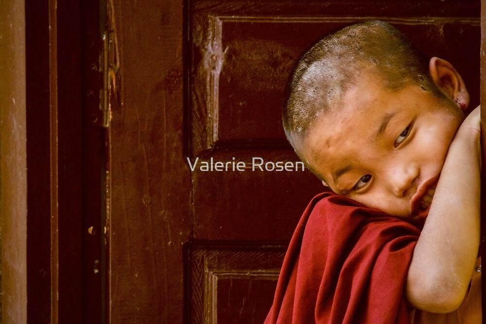 LIttle Monk by Valerie Rosen
