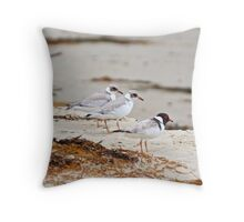 Hooded Plover Throw Pillow