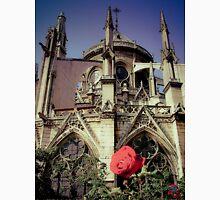 Notre Rose de Paris  Unisex T-Shirt