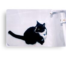 Bath Anyone? Canvas Print