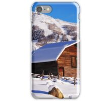 The Famous Barn iPhone Case/Skin