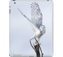 Transcend iPad Case/Skin