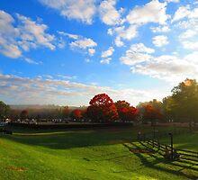 Fall in New York by Pokewidowz