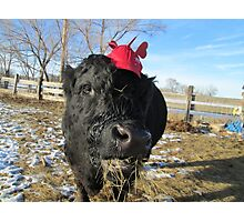 A Hat With a Hint Photographic Print