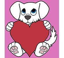 Valentine's Day White Dog with Red Heart Photographic Print
