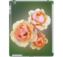yellow roses iPad Case/Skin
