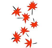 Fall-Zen Photographic Print